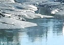 Reflets le matin à marée basse